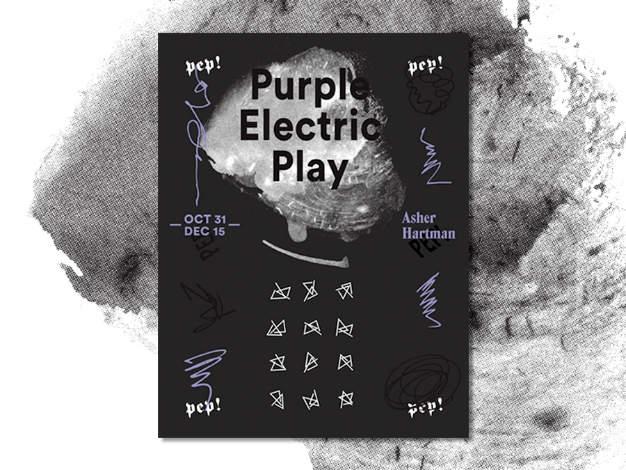 Purple Electric Play,  Asher Hartman, Machine Projects, 2014